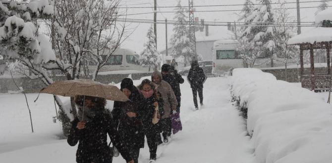 Yoğun kar yağışı ulaşımı olumsuz etkiliyor