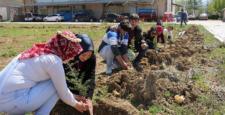 Yalıhüyük Anadolu Lisesi öğrencileri ağaç dikti