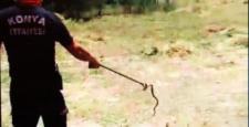 Yalıhüyük'de eve giren yılanı itfaiye ekipleri çıkardı